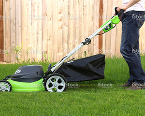 Grass Cutting Gardening Services 3