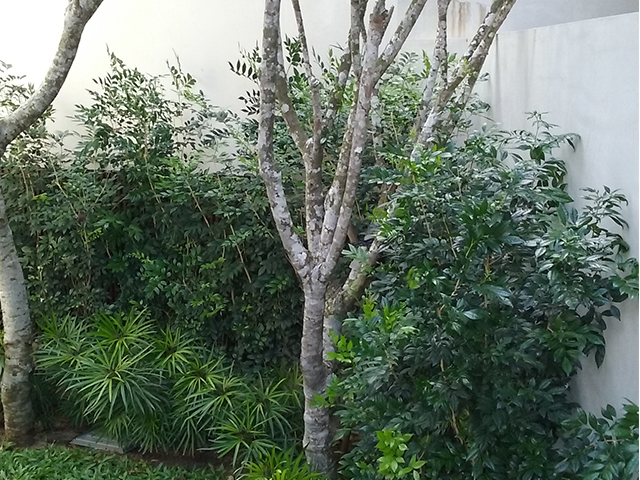 landed landscaping portfolio 1
