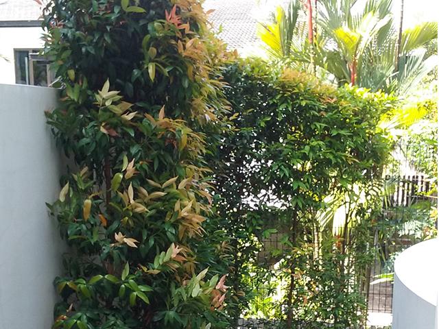 landed landscaping portfolio 2