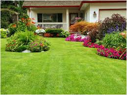Landscaping services Singapore