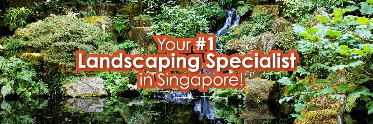 Landscaping Singapore Slide 1