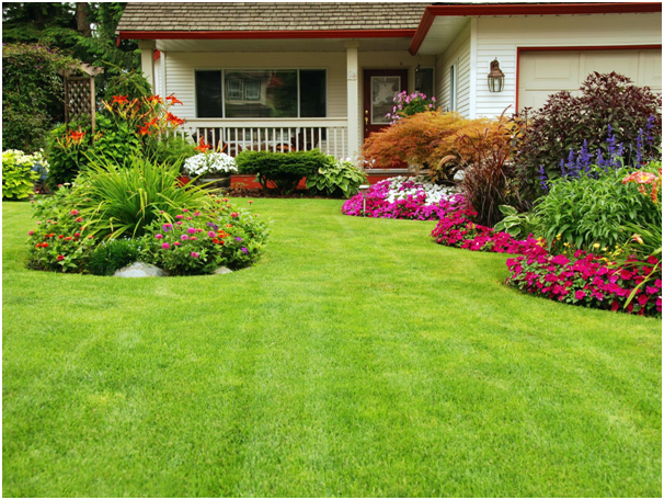Lawn care services as part of landscaping in Singapore