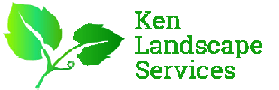 Landscaping Company in Singapore