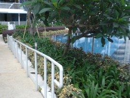 landscaping condo portfolio 3