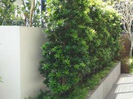landed landscaping portfolio 3