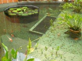 singapore landscaping services paya lebar school 2