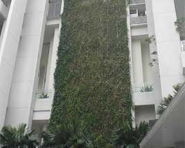 vertical green wall landscaping 6